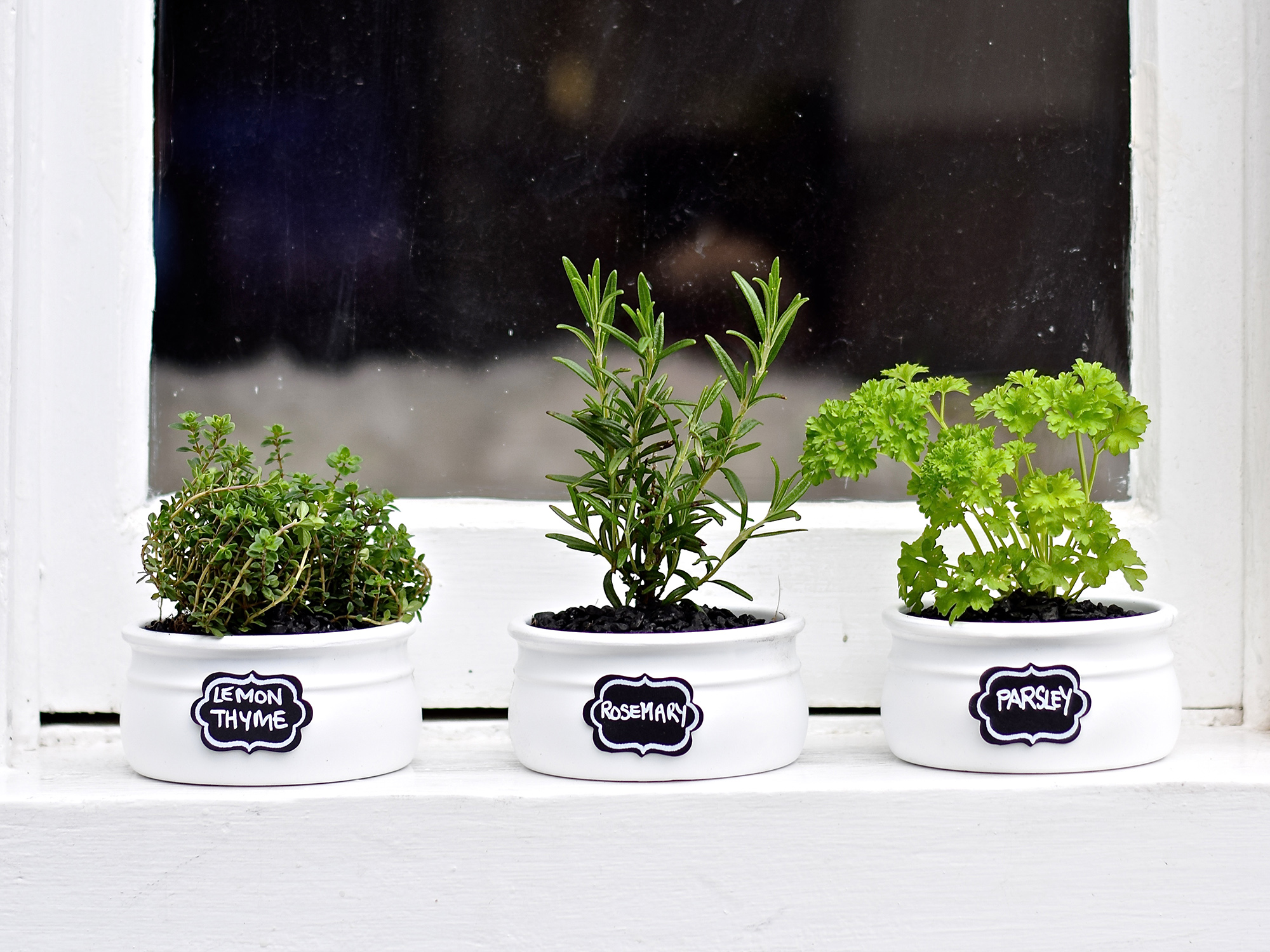 Herb pots for kitchen - Share Your Kitchen Herb Garden Creations With Us Via Instagram And Facebook